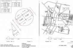 1,000 SQM COMMERCIAL PRIME LOT FOR SALE IN KABANKALAN  NEGROS